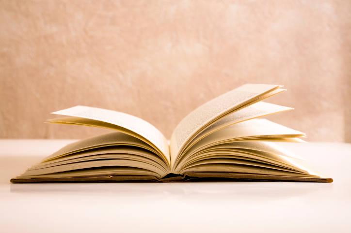 literature tutor