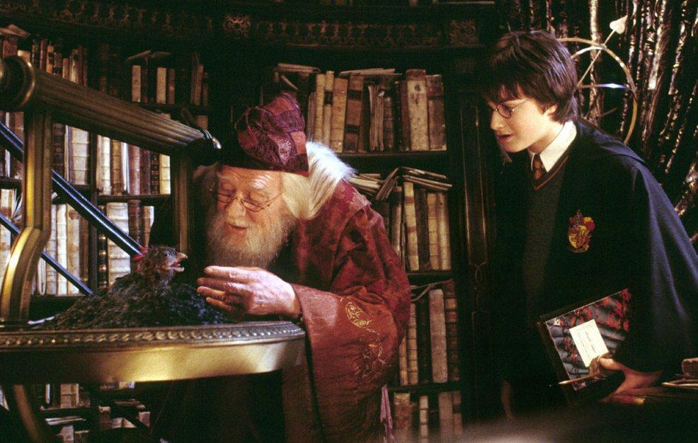dumbledore13