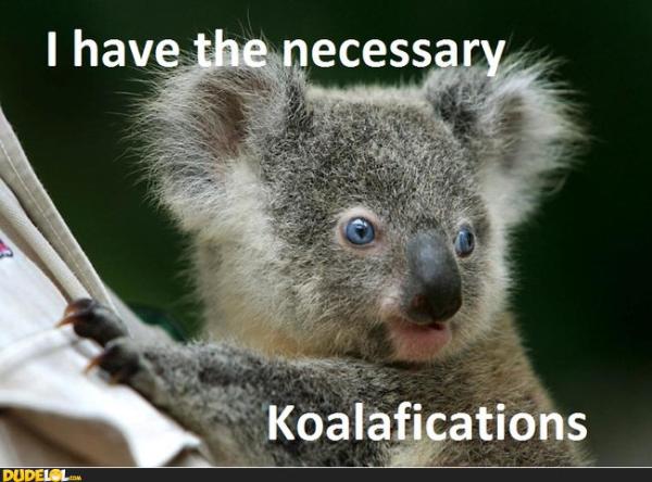 koalafications resized 600