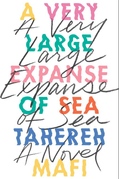 A very long expanse of sea - young adult books