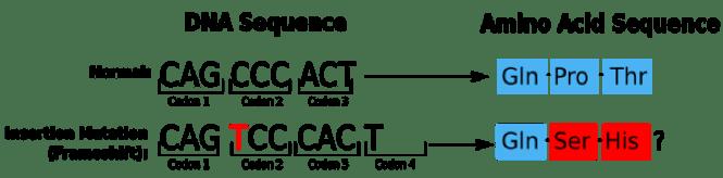 Eden 1-1.png
