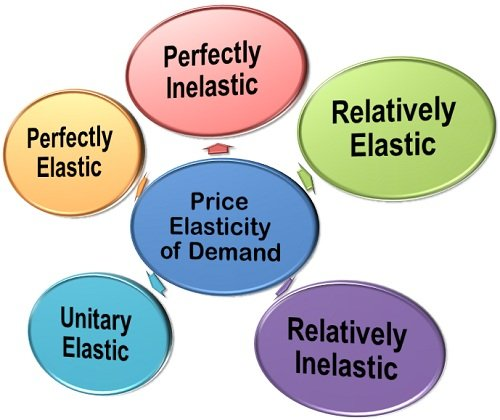 Understanding Elasticity Of Demand In Economics