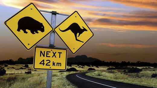 australia-road-trip-cangaroo-sign