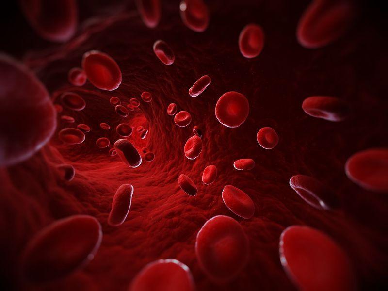 blood type.jpg