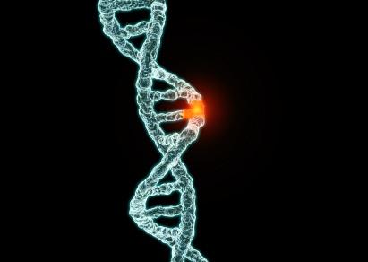 gene-mutation.jpg